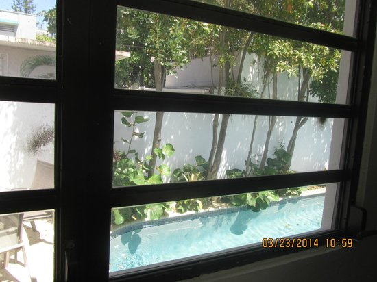 Tres Palmas Inn : another window view of room 12