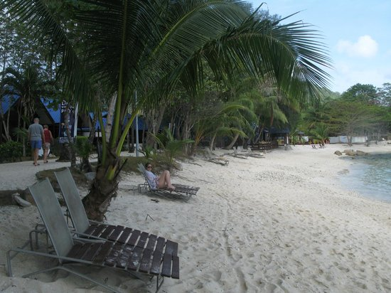 Coral View Island Resort: great snorkelling just steps into the water from Coral View Beach