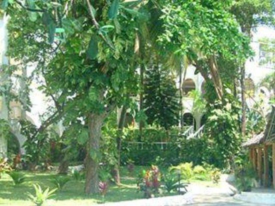 The Plaza Beach Hotel: Gardens