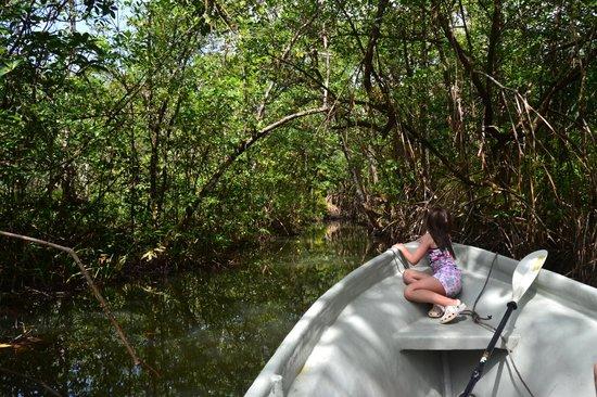 Queen Lobster Bungalows: Manglar de Tuba Creek