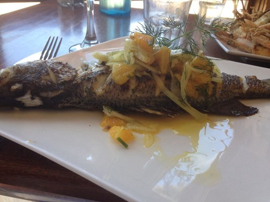 The Flying Fish Cafe: Barramundi with fennel & citrus salad