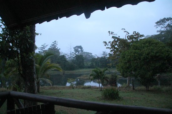 Maquenque Eco-Lodge : dawn from the cabin veranda