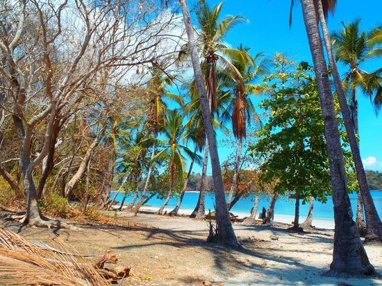 The Resort at Isla Palenque: Island hopping tour