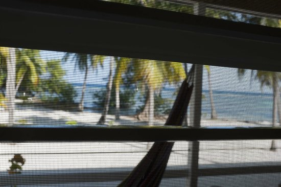 Pelican Beach - South Water Caye: View through the jalousies in our room