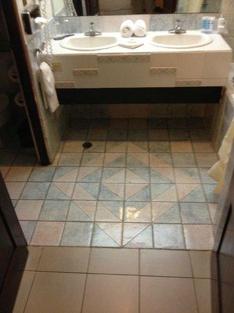 Wyndham San Jose Herradura Hotel & Convention Center: dated bathroom
