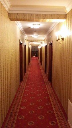 Hotel Sarmata: Hol i pokoje