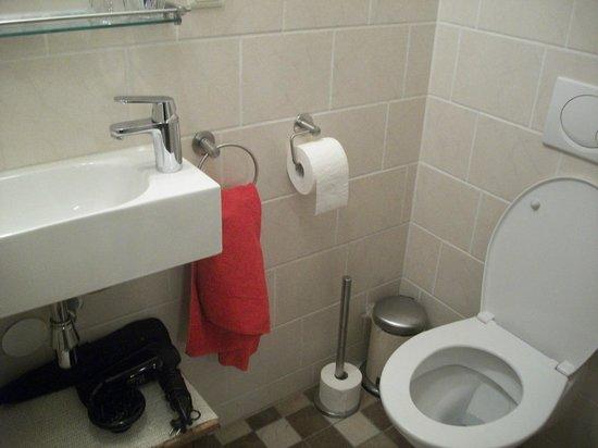 Tulip of Amsterdam B&B: baño con secador y planchita