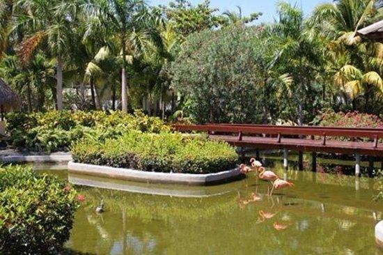The Reserve at Paradisus Punta Cana: Restaurante Italiano