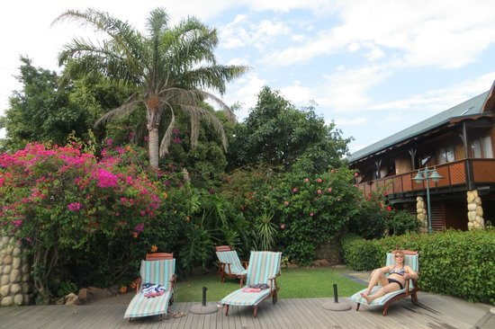 Knysna Log-Inn Hotel: Gardens and back of hotel