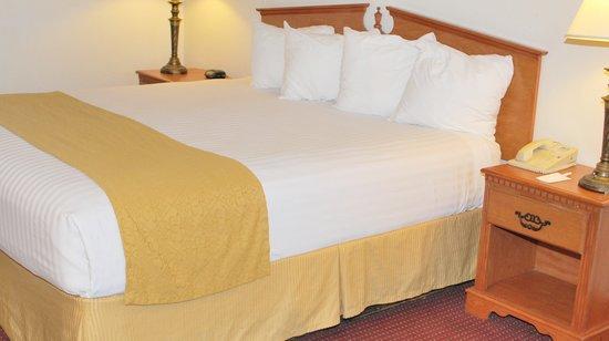 Vagabond Inn & Suites Klamath Falls: Single Queen