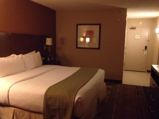Holiday Inn Greensboro Airport: Nice king room