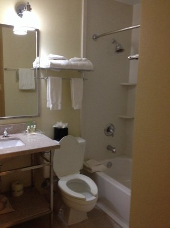 Holiday Inn Greensboro Airport: Bathroom