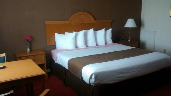 Westbridge Inn & Suites: Single king room