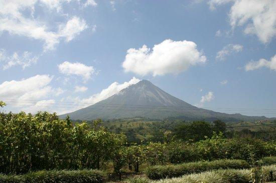 Hotel Montana de Fuego Resort & Spa: Arenal Volcano