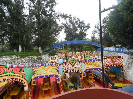 Floating Gardens of Xochimilco: trajineras