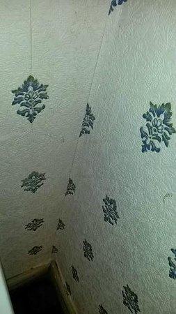 Verdene Hotel B&B: Dirty wallpaper