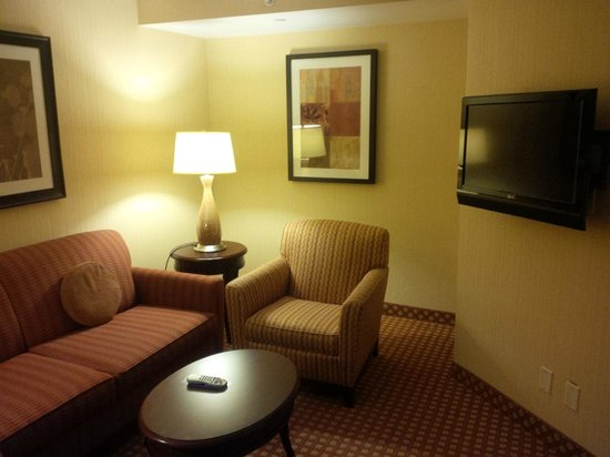Hilton Garden Inn Toronto Airport: Junior suite