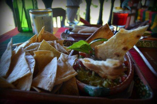 Vallarta Botanical Gardens: Guacomole chips appetizer