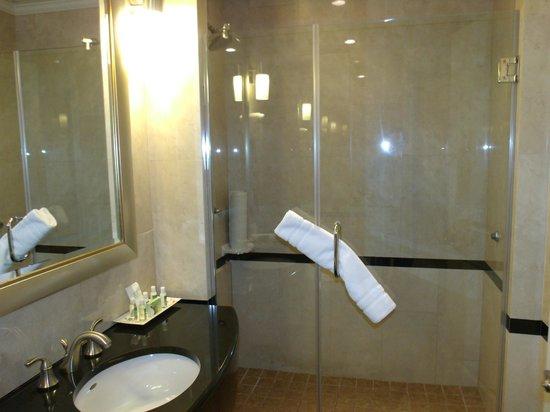 Hotel Stanford: Ducha