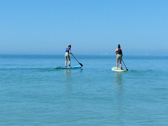 Sarasota Paddleboard Company : beach day
