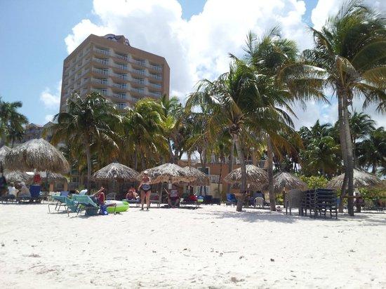 Divi Aruba Phoenix Beach Resort: Beach area