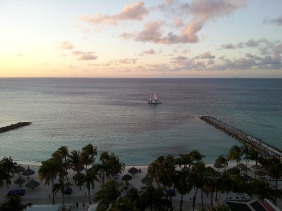 Divi Aruba Phoenix Beach Resort: View from the room