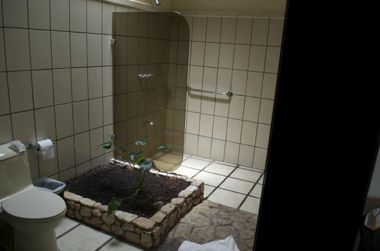 Arenal Manoa Hotel : The bathroom complete with a fresh plant