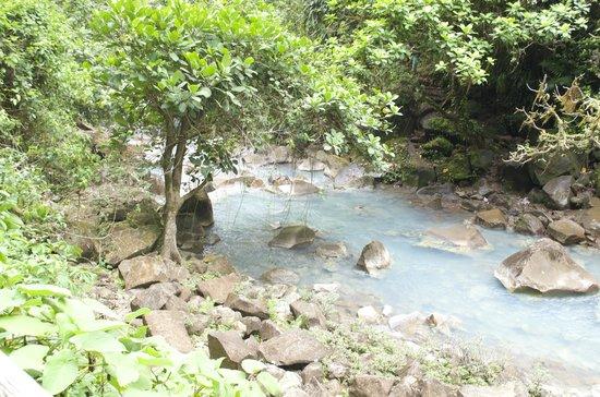 Canoa Aventura: The river