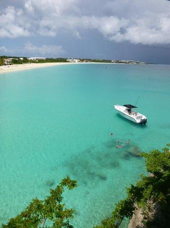 Dexter at Anguilla