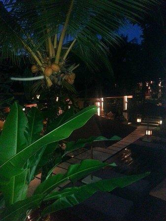 Villa Sabandari: night time view