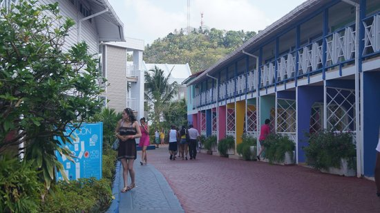 Hotel Blue Cove: Camino a Torre Dos