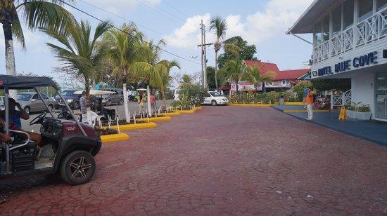 Hotel Blue Cove: Parqueo Buses