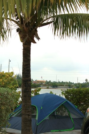 Boyd's Key West Campground: Our site