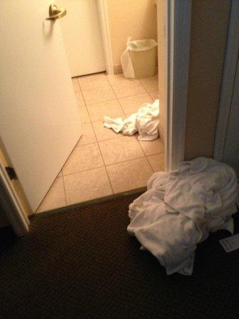 StaySky Suites I-Drive Orlando : Baño
