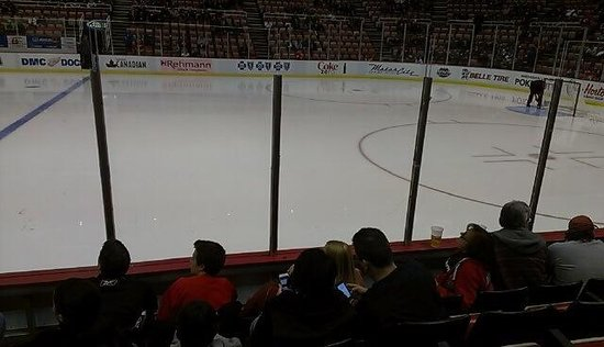 Joe Louis Arena: Just off center ice