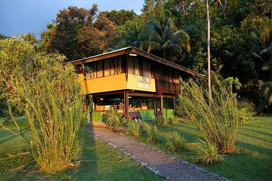 Saladero Eco Lodge: Beach house