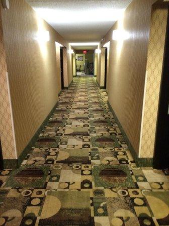 Quality Inn: Hallway