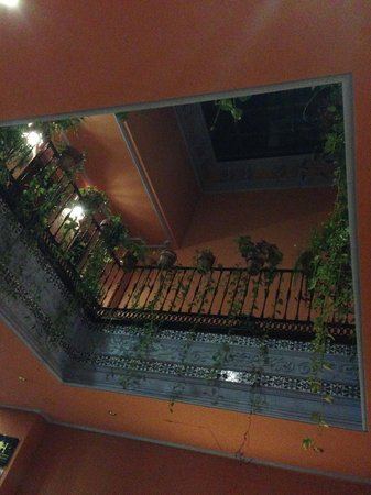 PV-Holidays Residence Patio de la Alameda : vista