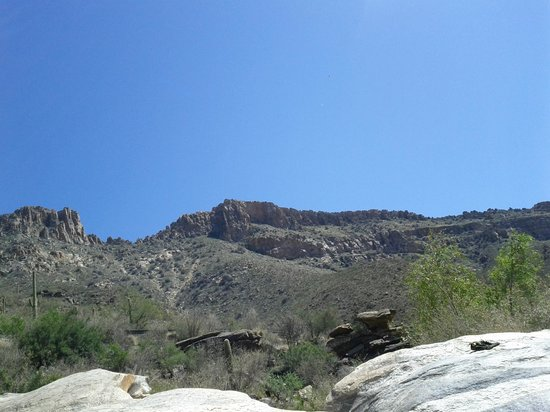 Sabino Canyon stop #8 by the creek
