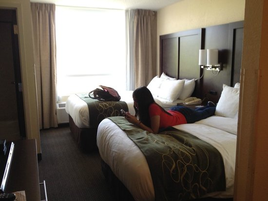 Comfort Suites Weston  - Sawgrass Mills South: Camas