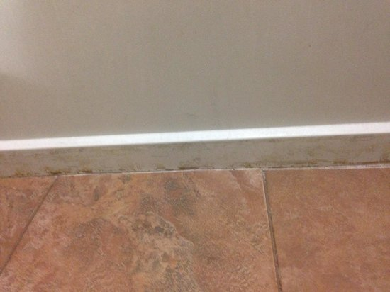March 29, 2014. Mold growing along the tub. - Picture of Stay ...