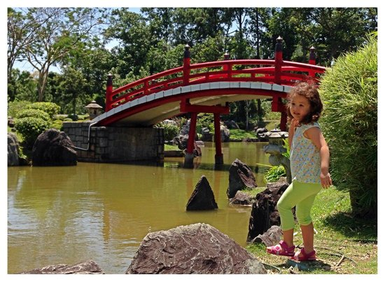 Chinese and Japanese Gardens: oh- this is precious