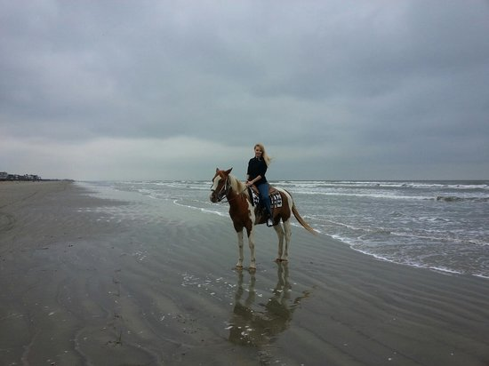 S-n-G Horseback Riding : Leonor Muller- S-n-G Riding. Galveston