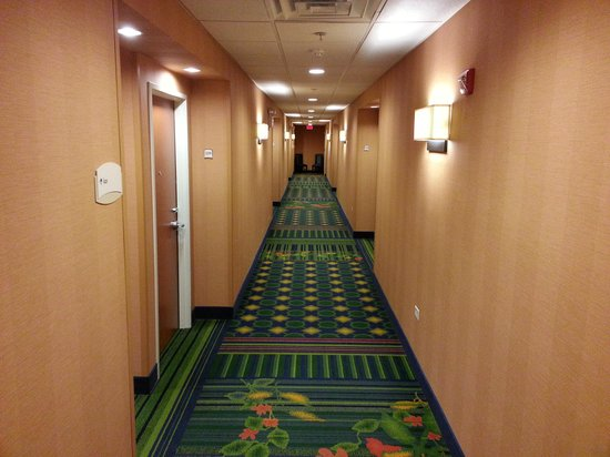 Fairfield Inn & Suites Ottawa Starved Rock Area: 2nd floor hallway. Very clean.