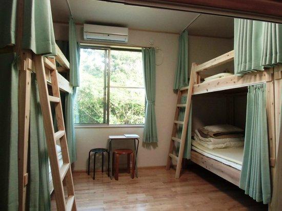 Guesthouse Yakushima : Dormitory