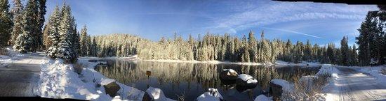 Montecito Sequoia Lodge: The lake in snow