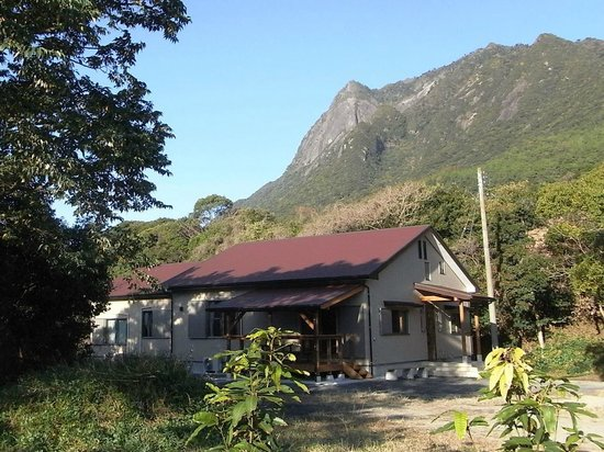 Guesthouse Yakushima : Guesthouse and Mt.Mocchomu