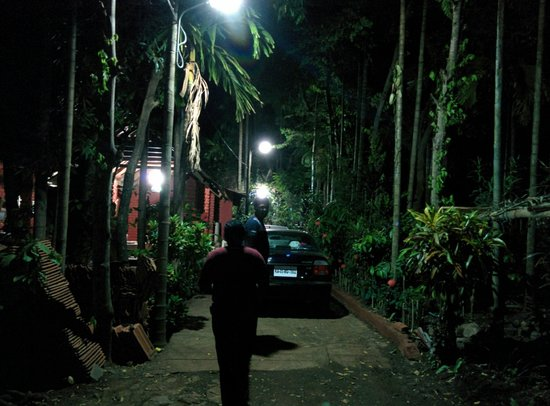 Valley of Birds Homestay: The enterance to the homestay, convenient place to park Cars Too.