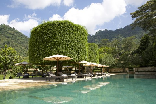 Amanjiwo Resorts : Chilling by the magnificent pool
