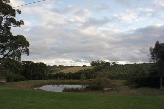 Hart's Farm: The view
